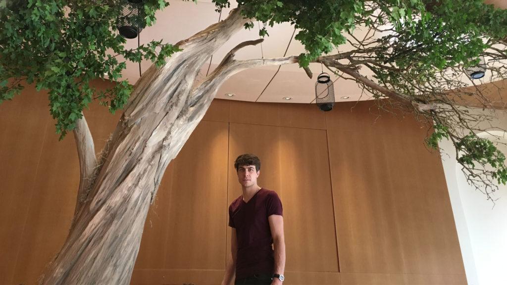faux arbre déco corentin meige suisse france Paris lausanne